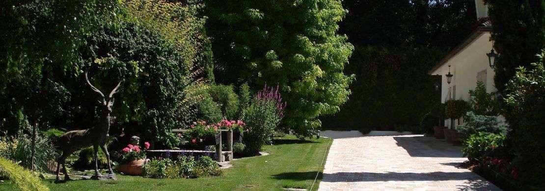 entretien-d-espaces-de-particulier-jardins-terrasses-cltures-etc-358