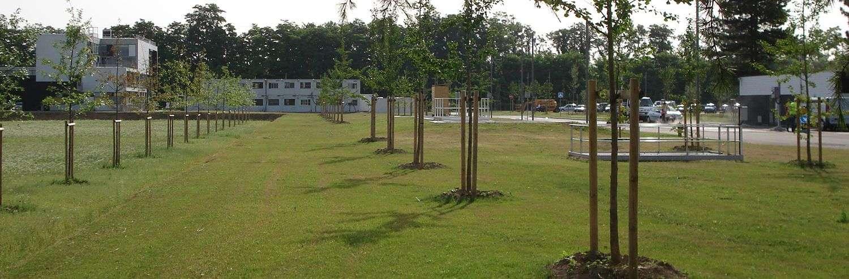 Plantation d'arbres par Lelievre