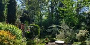 entretien de jardin